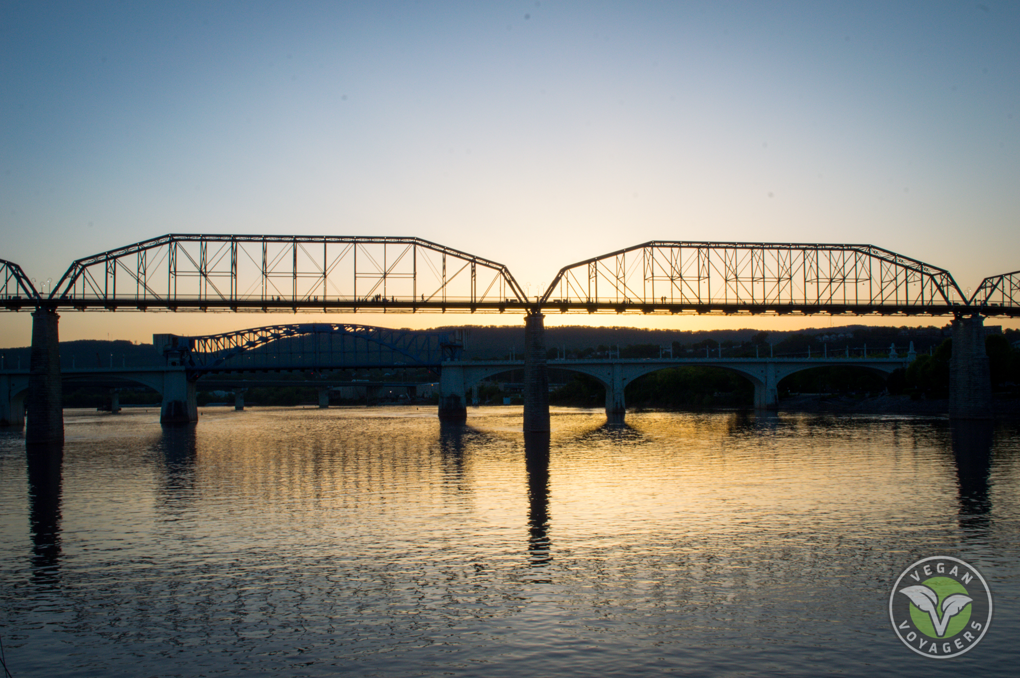 Top 7 Things to do in Chattanooga, Tennessee   Vegan Voyagers