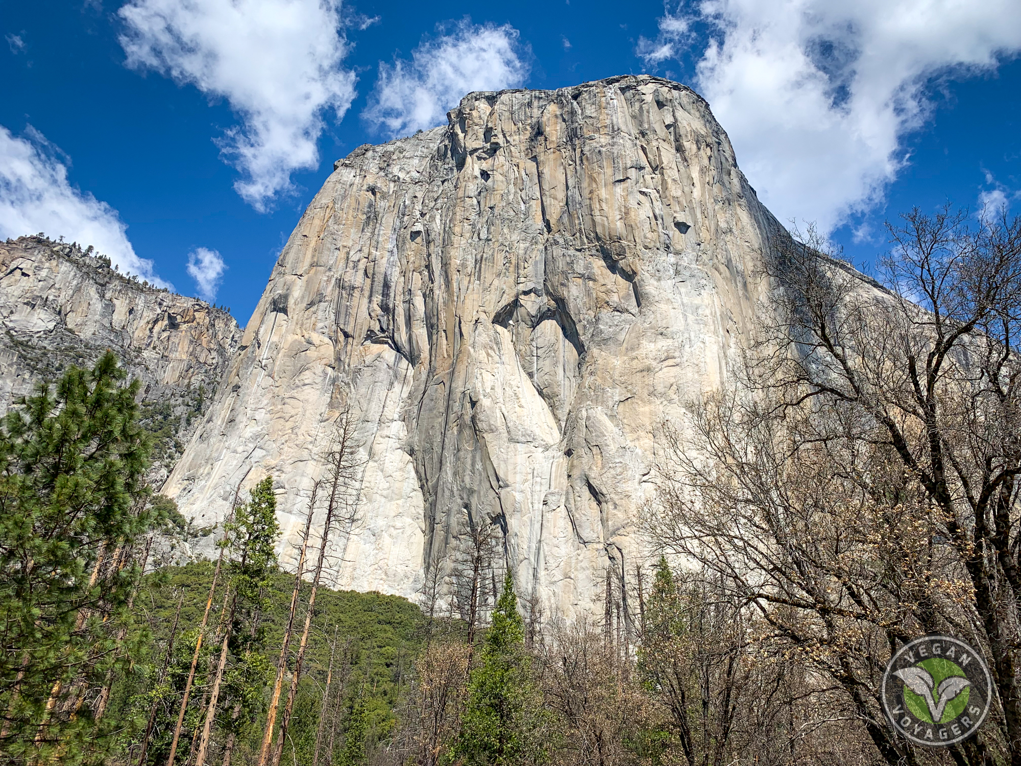 How to Beat the Crowds at Yosemite National Park | Vegan Voyagers