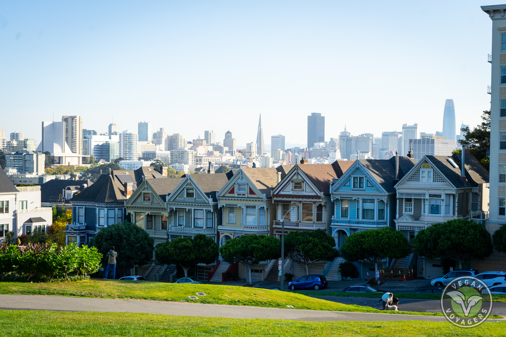 San Francisco Travel Guide | Painted Ladies
