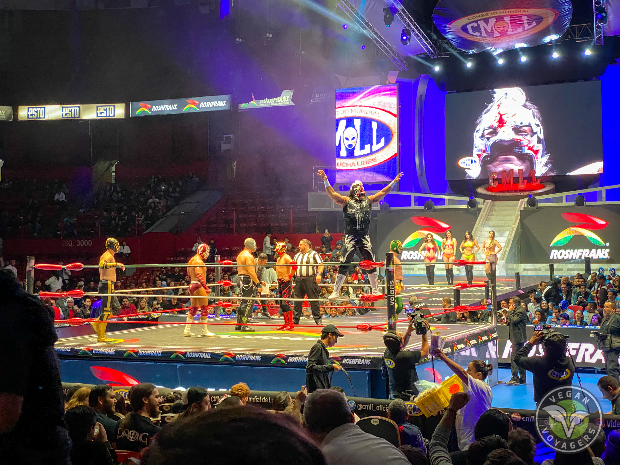 Best Things to do in Mexico City | Lucha Libre