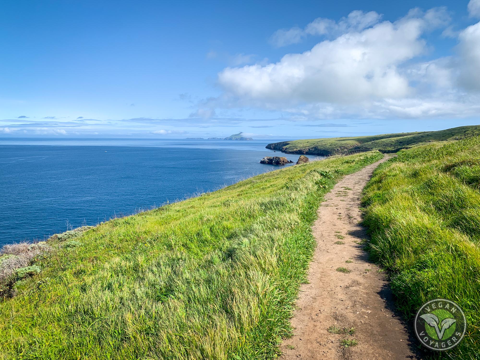 Channel Islands | 10 Unique Landscapes to Visit on a West Coast Road Trip