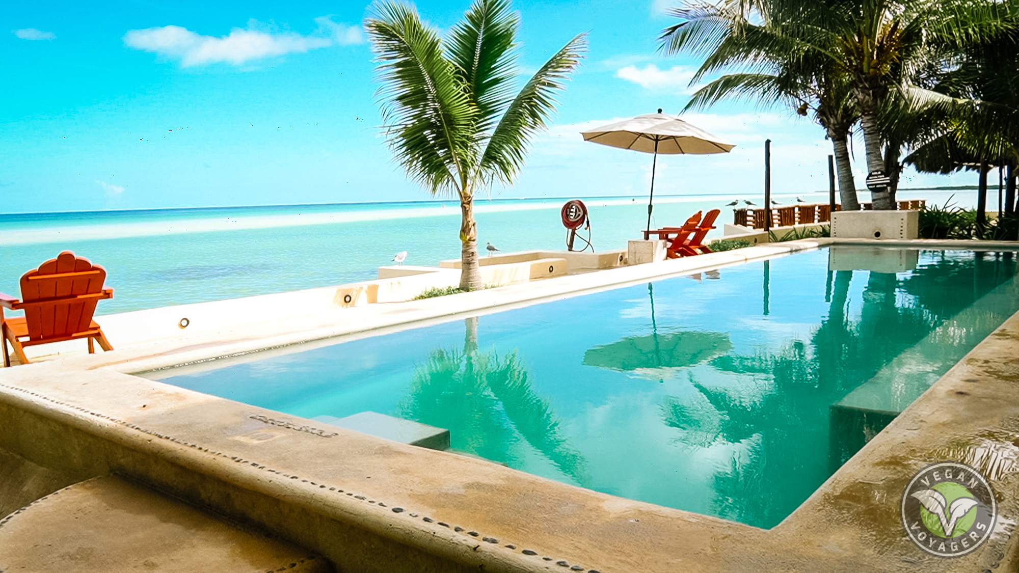 The pool at Hotel Las Nubes   Tips for Visiting Isla Holbox, Mexico