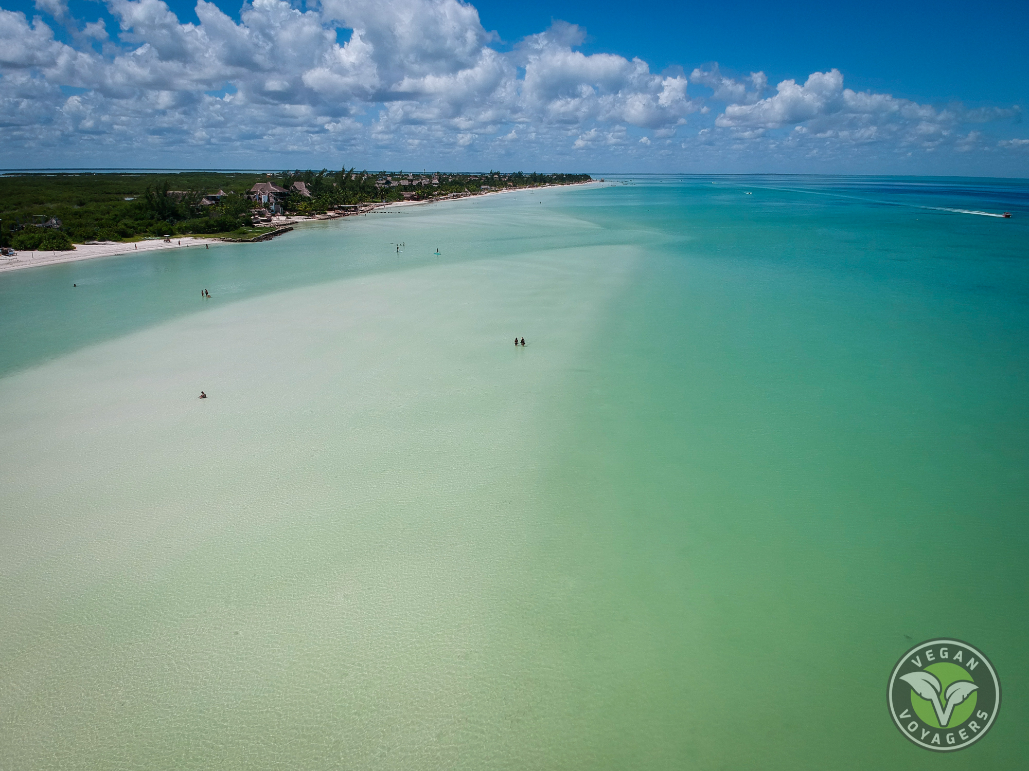 The sand bar   Tips for Visiting Isla Holbox, Mexico